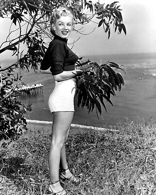 Marilyn Monroe Iconic Actress And Sex-Symbol - 8X10 Publicity Photo (Op-276)