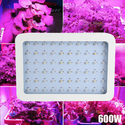 600W LED Grow Light Hydro Full Spectrum Hydroponic Indoor Veg Bloom Plant Lamp