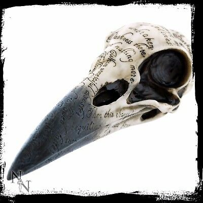 Edgars Raven Skull Inscribed Crows Head Brand New Gothic Ornament 21cm Gift