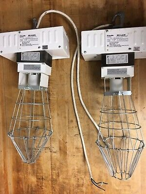 Pair of Acculite M-59 Lamp HI-LUX Industrial 400W Caged Lamp