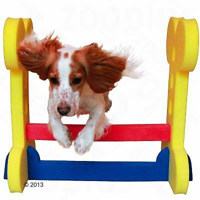Puppies Small Dog Training Agility Equipment Jumps Hurdle Sports Home / Outdoor