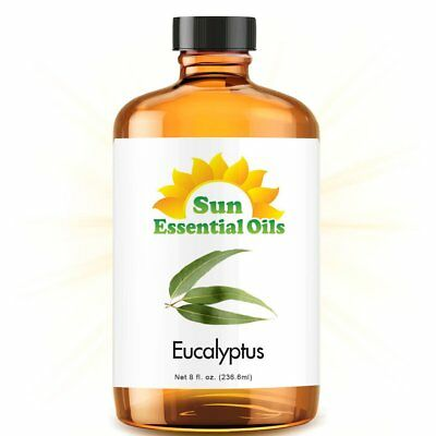 Eucalyptus Essential Oil (Huge 8oz) 100% Pure Amber Bottle + Dropper