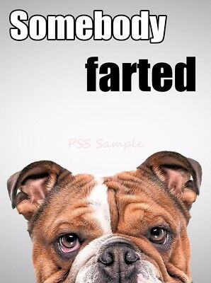 "ENGLISH BULLDOG  4"" x 3"" Somebody Farted"