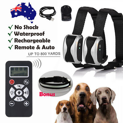 Electric Remote Dog Training Collar Anti Bark 800m Range NO-SHOCK Auto Mode   AU