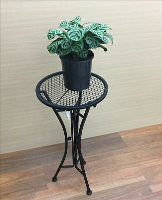 French Country Vintage Inspired Wrought Iron BLACK ROUND Side Table Plant Holder