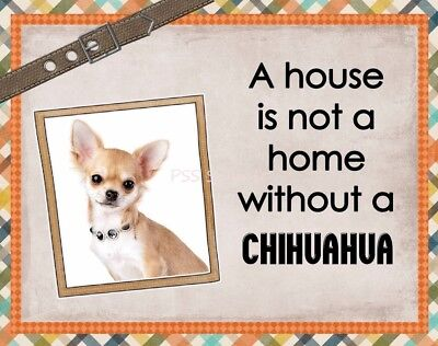 CHIHUAHUA Custom Magnet Using YOUR Photo A House Is Not A Home