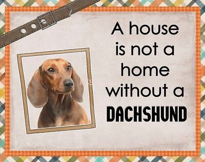 RED DACHSHUND Custom Magnet Using YOUR Photo A House Is Not A Home