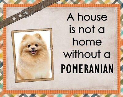 POMERANIAN Custom Magnet Using YOUR Photo A House Is Not A Home