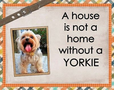 YORKSHIRE TERRIER Custom Magnet Using YOUR Photo A House Is Not A Home