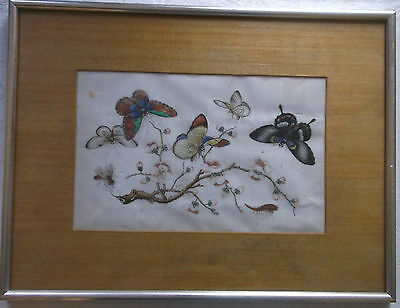 FRAMED 19th CENTURY CHINESE PITH/RICE PAINTING A STUDY OF BUTTERFLIES