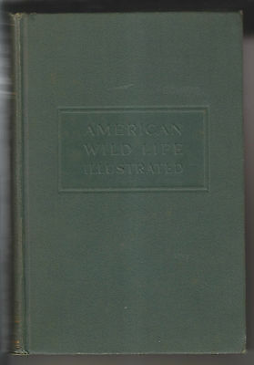 1940 Book - American Wild Life Illustrated - New York City Wpa Writers' Project