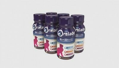 Oralade Oral Hydration For Cats 6 x 330ml, Premium Service, Fast Dispatch