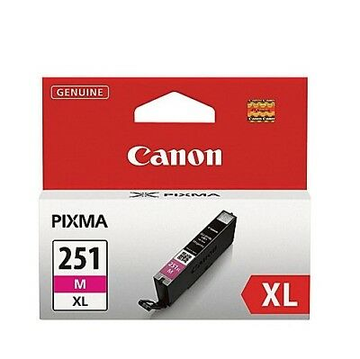 Canon - Ink Supplies - 6450B001