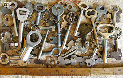 Skeleton Keys - 50+ Antique Vintage Flat Old Keys Lot Set Wholesale Lion Barrel