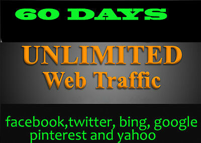Unlimited Organic & Social Media  Web Traffic for 2 months