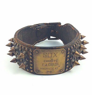 Antique leather dog collar with spikes and brass name plate Sox