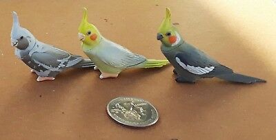 3 cockatiel figures, different colors, Kaiyodo ChocoQ Pets #2, detailed & HTF