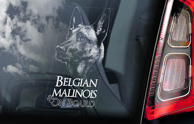 Belgian Malinois on Board - Car Window Sticker - Mechelse Dog Sign Decal - V18