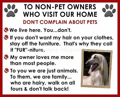 AFGHAN HOUND House Rules for Non Pet Owners Funny Fridge Magnet