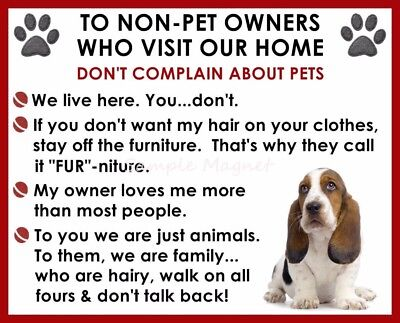 BASSET HOUND House Rules for Non Pet Owners Funny Fridge Magnet