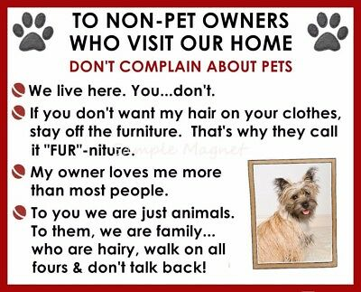 CAIRN TERRIER House Rules for Non Pet Owners Funny Fridge Magnet Design 2