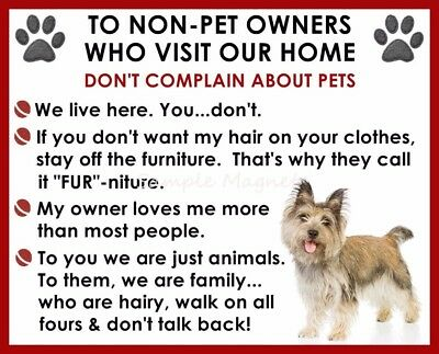 CAIRN TERRIER House Rules for Non Pet Owners Funny Fridge Magnet
