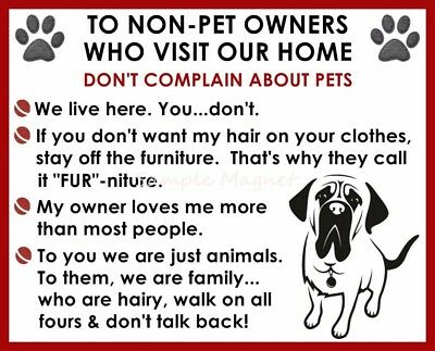 ENGLISH MASTIFF House Rules for Non Pet Owners Funny Fridge Magnet