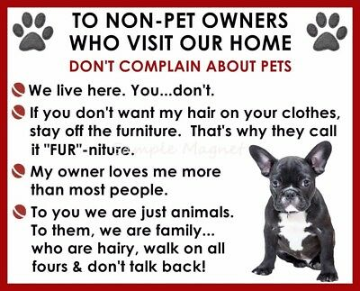BLACK FRENCH BULLDOG House Rules for Non Pet Owners Funny Fridge Magnet