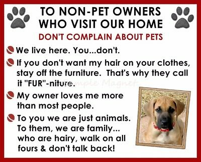 GREAT DANE House Rules for Non Pet Owners Funny Fridge Magnet