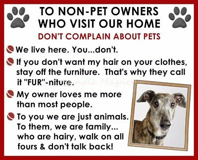 GREYHOUND House Rules for Non Pet Owners Funny Fridge Magnet Design 2