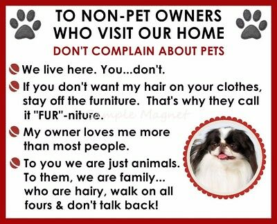 JAPANESE CHIN House Rules for Non Pet Owners Funny Fridge Magnet