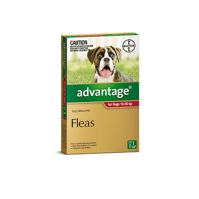 Advantage Flea Control for Dogs 10-25kg 1 Pack Single Dose Red
