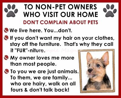 NORWICH House Rules for Non Pet Owners Funny Fridge Magnet