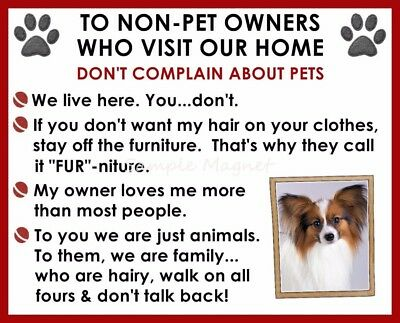 PAPILLON House Rules for Non Pet Owners Funny Fridge Magnet