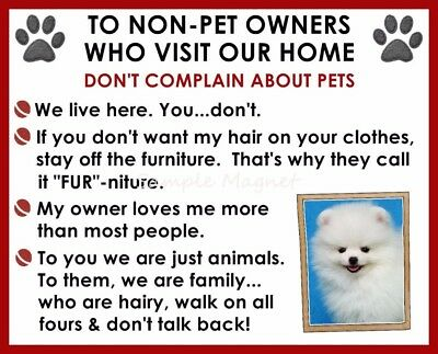 POMERANIAN House Rules for Non Pet Owners Funny Fridge Magnet