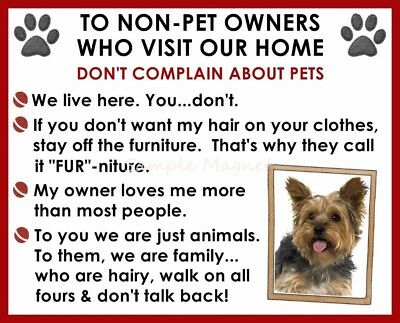 YORKSHIRE TERRIER House Rules for Non Pet Owners Funny Fridge Magnet