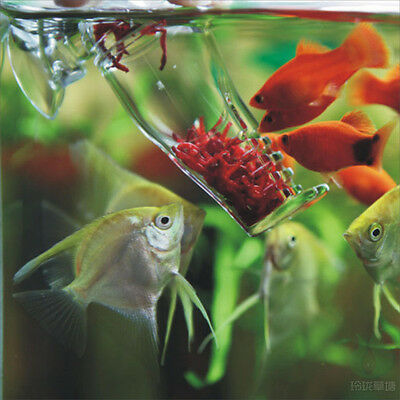 Aquarium tank Acrylics fish feeding Feeder snail trap Planarian leech Catch