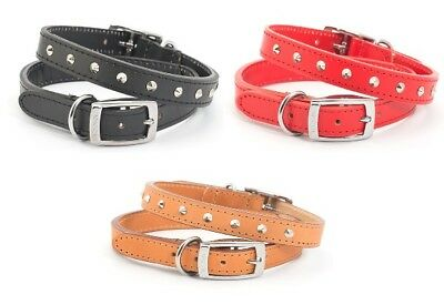 Ancol Dog Puppy Heritage Leather Nickle Plated STUDDED Strong Collar