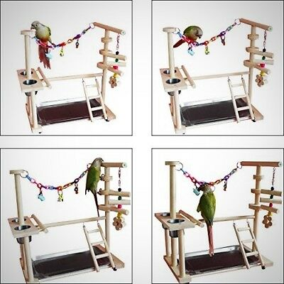Parrot Wood Stand Perch Bird Play Stand Playground Ladder Toys Exercise Pet Gym