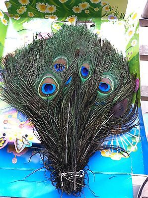 25 Pcs Beautiful Real Natural Peacock Eye Feathers 10-12' For Wedding Decoration
