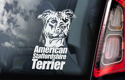 American Staffordshire Terrier -Car Window Sticker- Dog on Board Bull Decal -V02