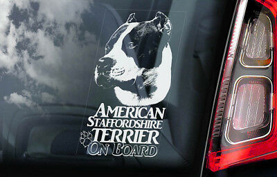 American Staffordshire Terrier -Car Window Sticker- Dog on Board Bull Decal -V13