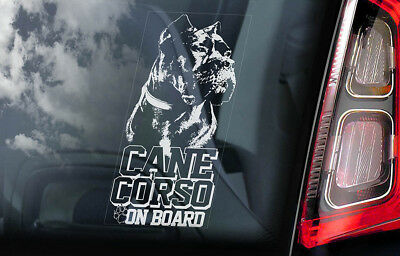 Cane Corso on Board - Car Window Sticker - Dog Sign Decal Italian Mastiff - V05