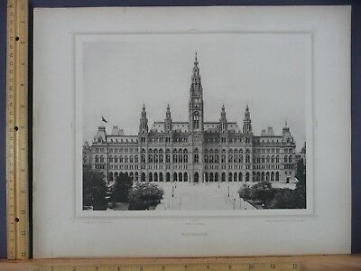 Rare Antique Original Vintage Rathhaus Vienna Austria Engraving Art Print