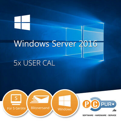 MS Microsoft Server 2016 Standard (5 Nutzer) User CAL
