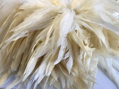 BULK 50 Butter Cream Rooster Coque Feathers 15-20cm DIY Craft Millinery Juju Hat