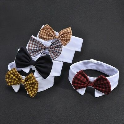 Cute Small Dog Grooming Bow Tie Collar Puppy Accessories puppy Bowtie Supplies