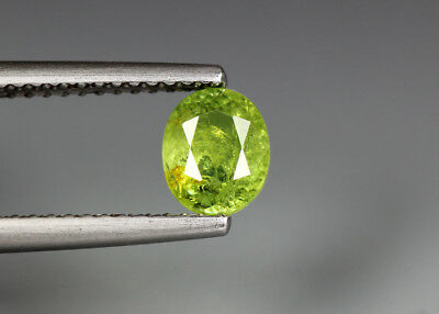 0.82 Cts_Electric Fire Rare Gemstone_100 % Natural Demantoid Garnet_Namibia