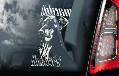 Dobermann on Board - Car Window Sticker - Doberman Pinscher K9 Sign Decal - V03