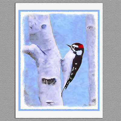 6 Downy Woodpecker Wild Bird Blank Art Note Greeting Cards